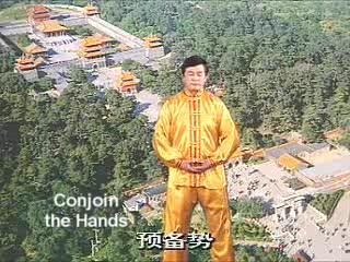 Falun Gong Exercise 3
